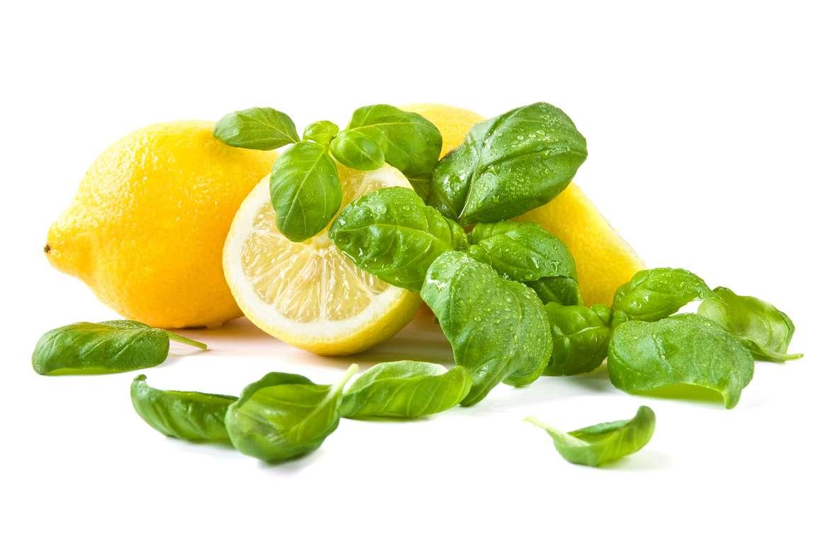 Basil-Flavoured Lemon Sorbet (Sorbetto di Limone al Basilico)