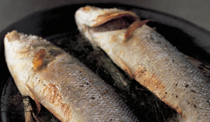 Roasted Sea Bass with Pastis (and a Camargue Rice Risotto)