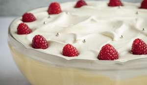 Raspberry Jelly Trifle