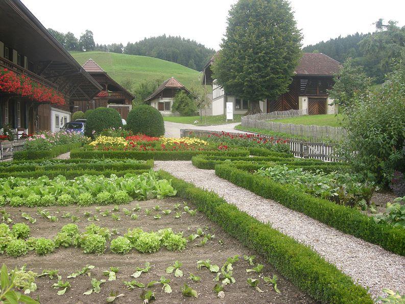 Blumenrabatten und Nutzpflanzen
