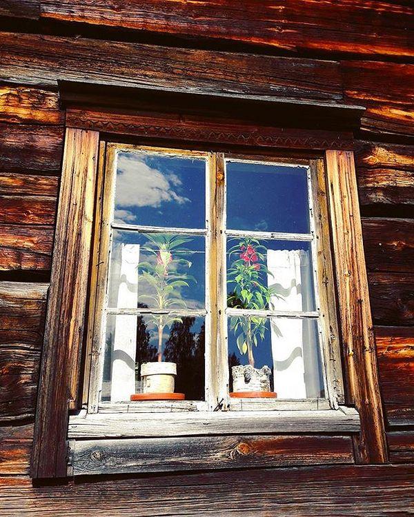 Pielisen museolla on talonpoikaisesineistöä liki 100.000 kappaletta. Museon synty liittyi kotiseutuneuvos Onni E. Koposen keräilyintoon, sittemmin hän toimi myös museon johtajana. Museo on Suomen toiseksi suurin ulkoilmamuseo. #ikkuna #palsamitikkunalla #palsamit #talonpoikaisaika #pielisenmuseo #museo #lieksa #Museokortti #museokierros @museokortti