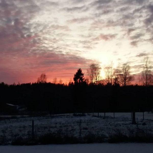 Olipahan taas kauniit värit taivaalla 😍  #joulukuu #taivas #ihanatvärit #kaunista #tohmajärvi