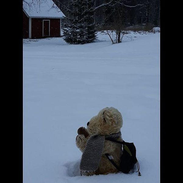 Sataa lunta!!! #LouhiNalle  #käsintehtynalle  #teddybear  #talvi #Liperi