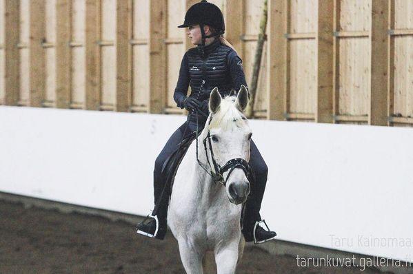 Joululomalla suunnitelmissa on käydä 3.1 Kantelesärkässä ja 4.1 Equidomilla kuvaamassa ja vielä mahtuu jos on kiinnostuneita🙈 Sitten alkaakin joululoma olla täynnä jo oikeista töistä ja valokuvauksista😅 Perjantaina oon menossa liperiin kuvaamaan tunteja, ja viikonloppu meneekin töissä🙈 Kuvassa Jonna Kortelainen & Ian Solo 🐴 #equinephotography #photography #horsephotography #tarumaariaphotography #hästphotographer #equinephotographer #dressage #dressagehorse #liperinratsastuskeskus #liperi #iansolo #canon #sigma #amateurphotography