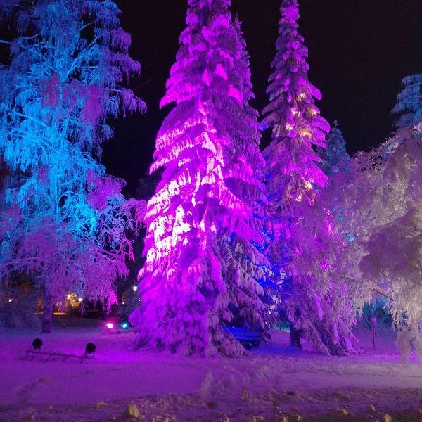 #Tohmajärvi#city lights