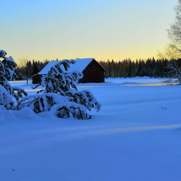 #sun #snow #cold #rääkkylä