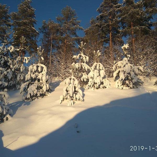 #kitee#finland#зима