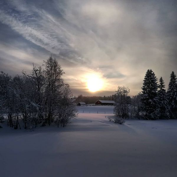 Pakkaspäivä #talvi #luonto #suomi #juuka #winterinfinland #wintersun #thisisfinland #ourfinland #naturelovers #naturegram #finnishmoments #beautyofsuomi #thebestoffinland #fiftyshades_of_nature #finland4seasons #ig_world_photo #natureloversgallery #discoveringfinland #finland_photolovers #ig_finland #loves_united_finland