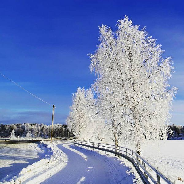 #beautyofsuomi #aamu #winterlook #wintermornings #morning #ihanasää #finlandia #suomi🇫🇮 #kitee #saltukoff_foto