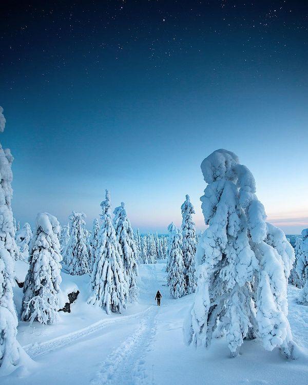 This is what Koli served in to my soul ✨💗 I'am so grateful for this weekend. 🙏🏼 #nordiccountries #visitkoli #koli #kolinationalpark #nordicnature #ig_finland #finland #visitfinland #ourfinland #suomiretki #retkipaikka #suomenluonto #luontoonfi #folkscenery #nature_focus_on #topfinlandphoto #exploretocreate #stayandwander #ourmoodydays #passionpassport #fotocatchers #outdoorphotography #travelsuomi #lovelyfinland #total_finland #earthfocus #helmikuu