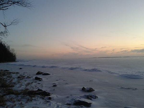 Kuhasalo #kuhasalo #joensuu #pohjoiskarjala #northkarelia #finland #winter #talvi #ranta #järvi #frozen #lake #shore #cloudy #dusk #landscape #wintercolours