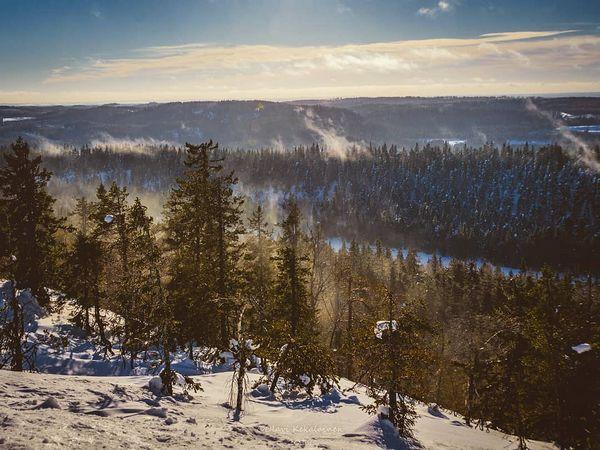 Water vapor rises of Koli forests last saturday.  #finland #northkarelia #lieksa #koli #kolinkansallispuisto #kolinationalpark #NationalPark #naturephotography #landscapes #landscapephotography #sonycameras #SonyAlphaPortrait #sonyalphasuomi #A6000 #FI_ILC #Saturday #february2019 #sunnyafternoon #suomenluonnonvalokuvaus #suomi #watervapor