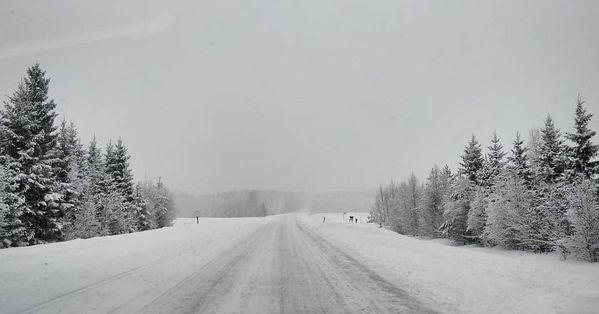 Finnish winterwonderland 💙🇫🇮 #finnishmoments #finnish #wintermagic #winterwonderland #total_finland #roads #ourfinland #ourbeautyfinland #lovelyfinland #pohjoiskarjala #everything_imaginable #riyets #visitfinland #thisisfinland #discoverfinland #kitee #northkarelia #treeart #tree_brilliance #tree_captures #total_trees #snowing #snow