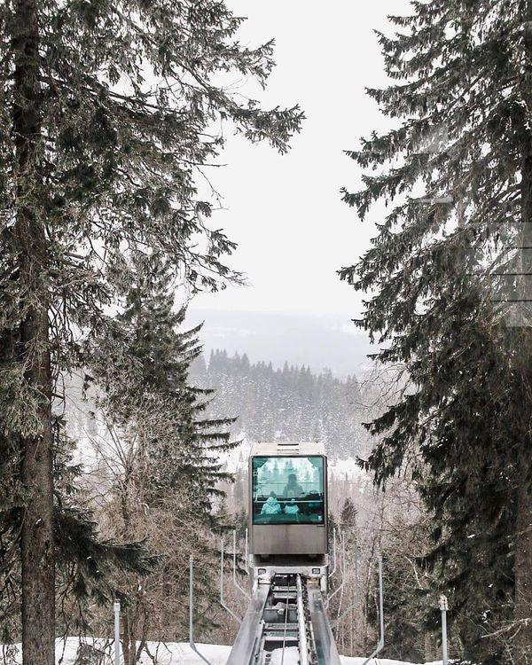 #Repost jaanakesselphoto • • • • • 🌲 • • • • #koli #finland #nature #suomi #photography #winter #canon #sigma #lightroom #valokuvaaja #valokuvaus #luonto #финляндия #зима #фото #фотограф