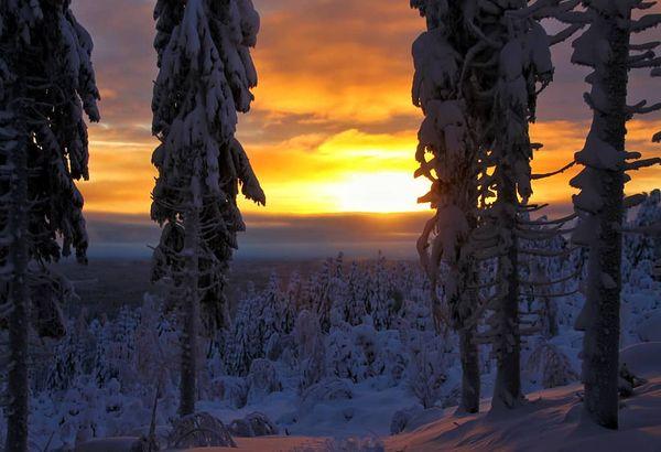 Ensi talvea odotellessa🤔😍 ☆☆☆ #finland4seasons #lovelyfinland #thisisfinland #discoverfinland #finlandphotolovers #visitingfinland #pocket_allnature #worldjournalpic #thebestoffinland #bestnatureshot #fiftyshades_of_twilight #landscape #naturephotography #ig_worldphoto #sunset_madness #sunset #winter #naturesmall #colors_of_day #finland #kolinkansallispuisto #kolinationalpark #northkarelia #juuka #lieksa #koli