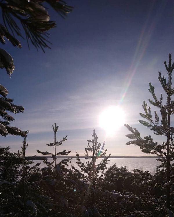 Auringonpaistetta synkkään päivään. Päivät hurjasti pidentyneet, sieltä se kevät tekee tuloaan. . . . . . #total_finland #finland_photolovers #ig_finland #outdoorsfinland #finnisnature #naturelovers #finland_frames #visitingfinland #höytiäinen #visitkarelia_finland #travelgram #hiking #luontoonfi #suomiretki #retkipaikka #jouhteninen #my_finland #yleluonto #nature #naturegram #nature_seekers #bns_finland  #finland4seasons #visitingfinland #thebestoffinland #beatyofsuomi #loves_united_finland #discoverfinland #landscapelover #suomenluonto