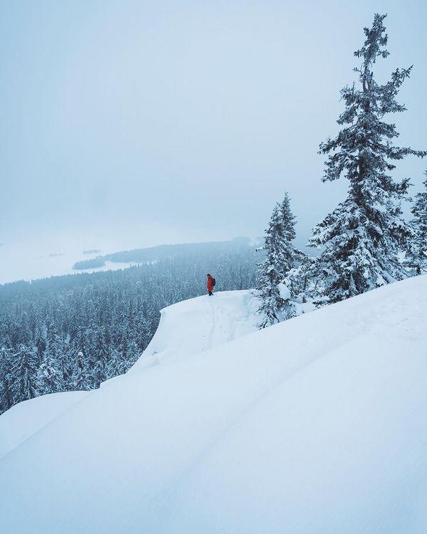 Скажите честно, вас просто достала зима? да?:) уже, наверное не можете смотреть на этот снег, холодные пейзажи и тд? ⠀ Ну что хочу сказать, придётся терпеть🤷🏼 ♂️😁 ибо зима только усиливает свой накал, я вновь собрался в Норвегию, ещё и «игра престолов» выходит:) В общем зима не просто «близко», зима внутри нас!!!