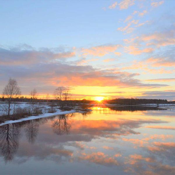 #luontokuva #yleluonto #thebestoffinland#finland_photolovers #forecasuomi #northkarelia #visitkarelia_finland #suomenluonto #worlds_beautiful_photos