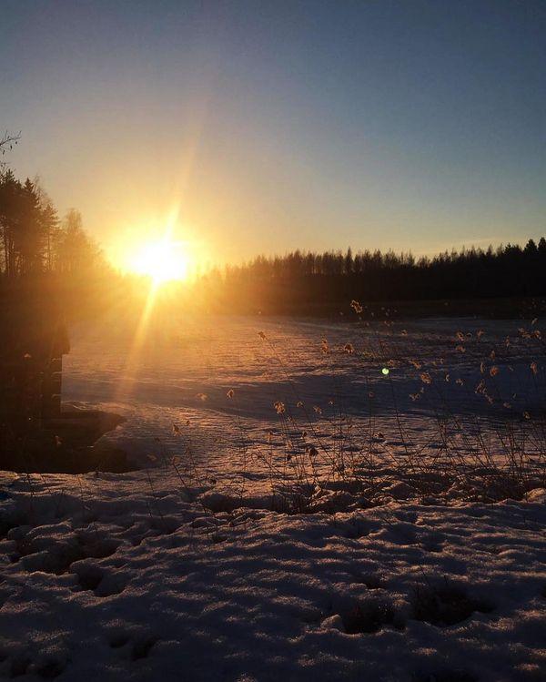Auringonlasku pohjoisen Saimaan saaristossa 🌅 hakoniemiluovatila  Beautiful sunset at Northern Saimaa.