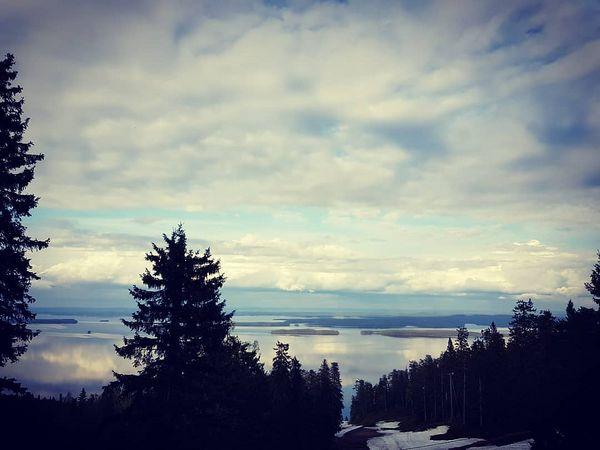 I ❤ Koli. #happyplace #visitkarelia_finland #lakeland #visitfinland #breaksokoshotelkoli #vieraitavastaanottamaan