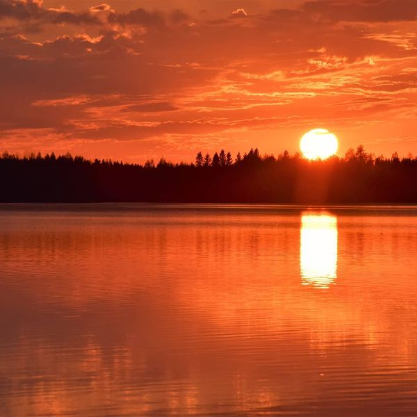 #suomenluonto #luontokuva #thebestoffinland #finland4seasons #finland_photolovers #forecasuomi #northkarelia #visitkarelia_finland #visitingfinland #yleluontokuva #yleluonto