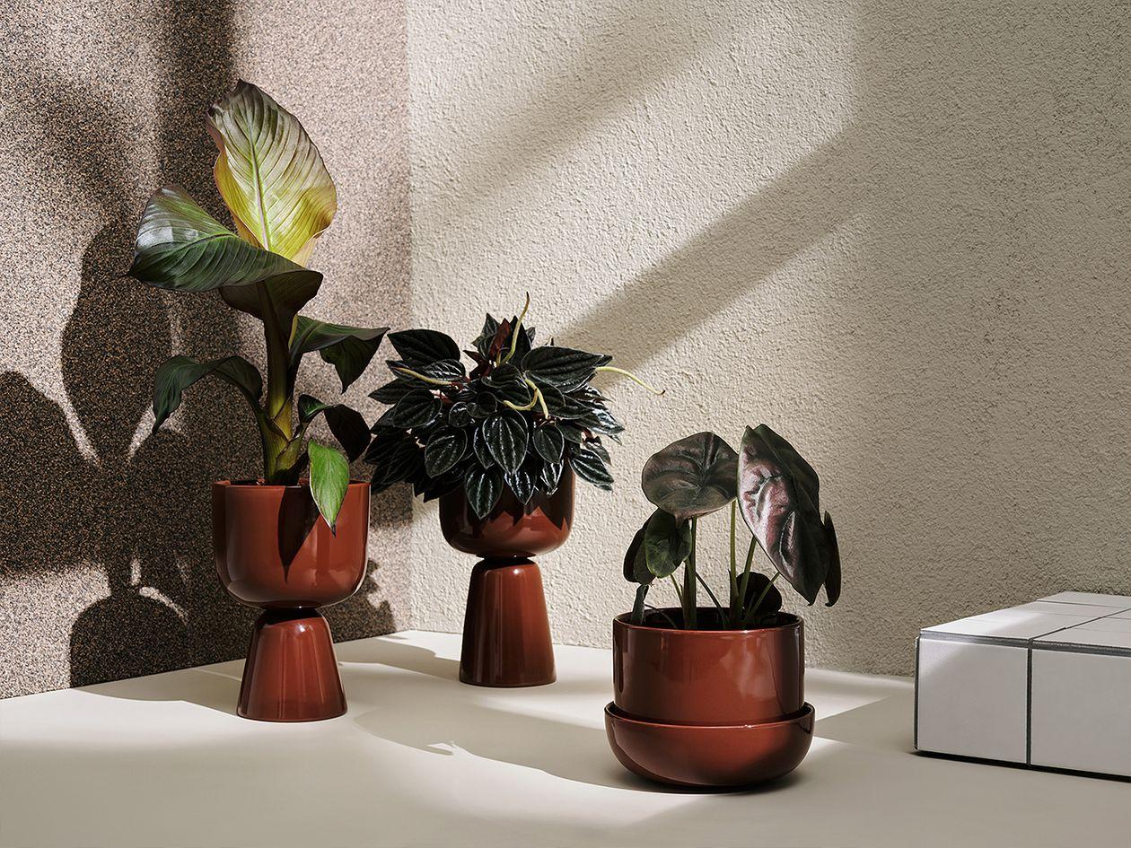 Iittala  Nappula plant pot with saucer 170 x 130 mm, brown
