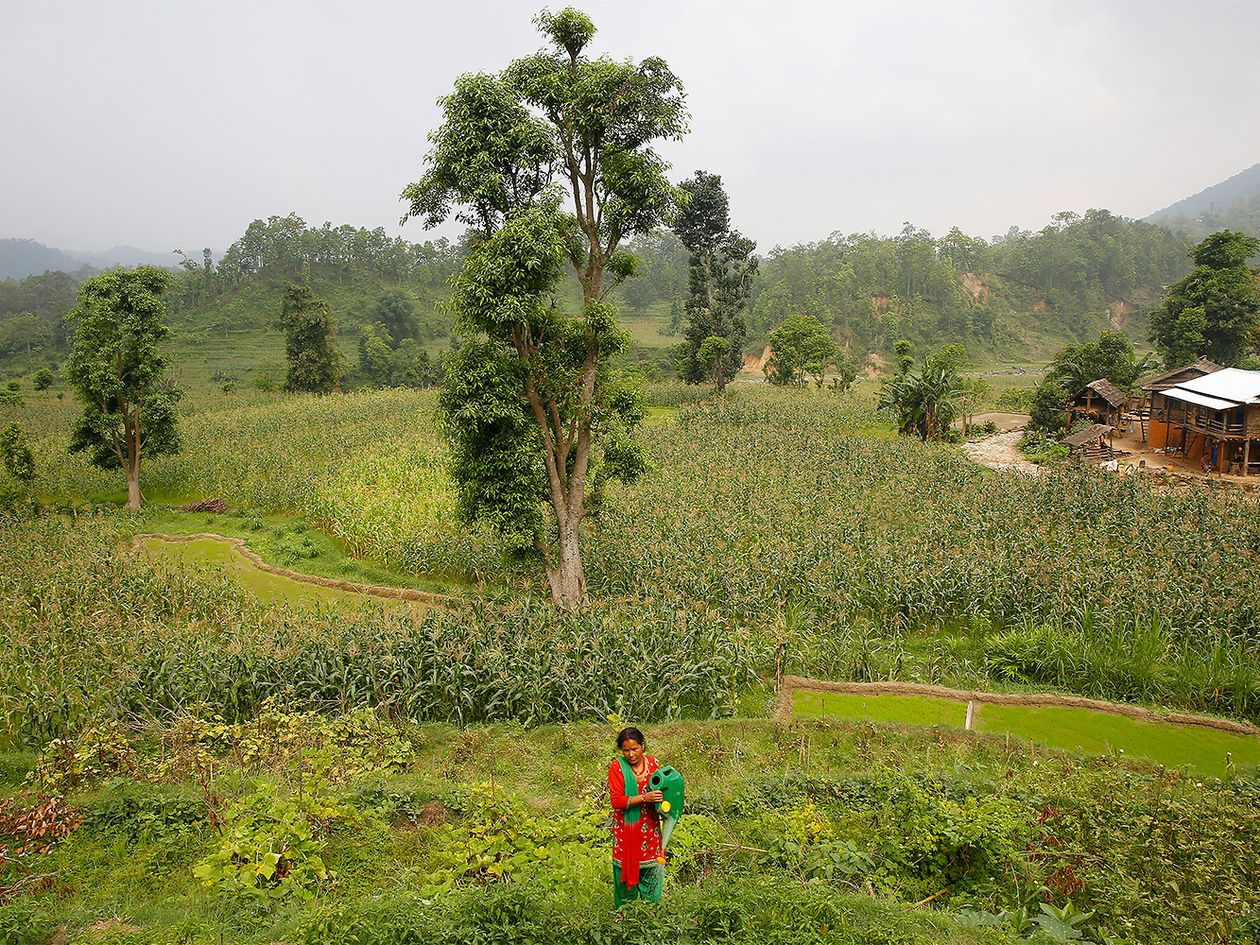 UN Women Nepal