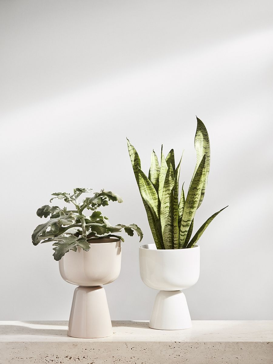 Iittala Nappula plant pot
