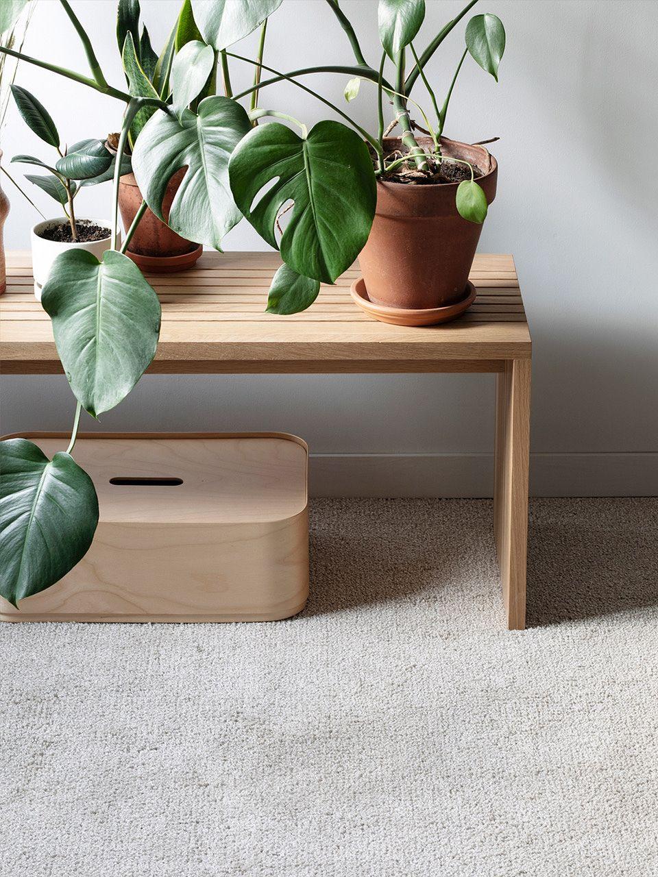 Iittala Vakka storage box in plywood