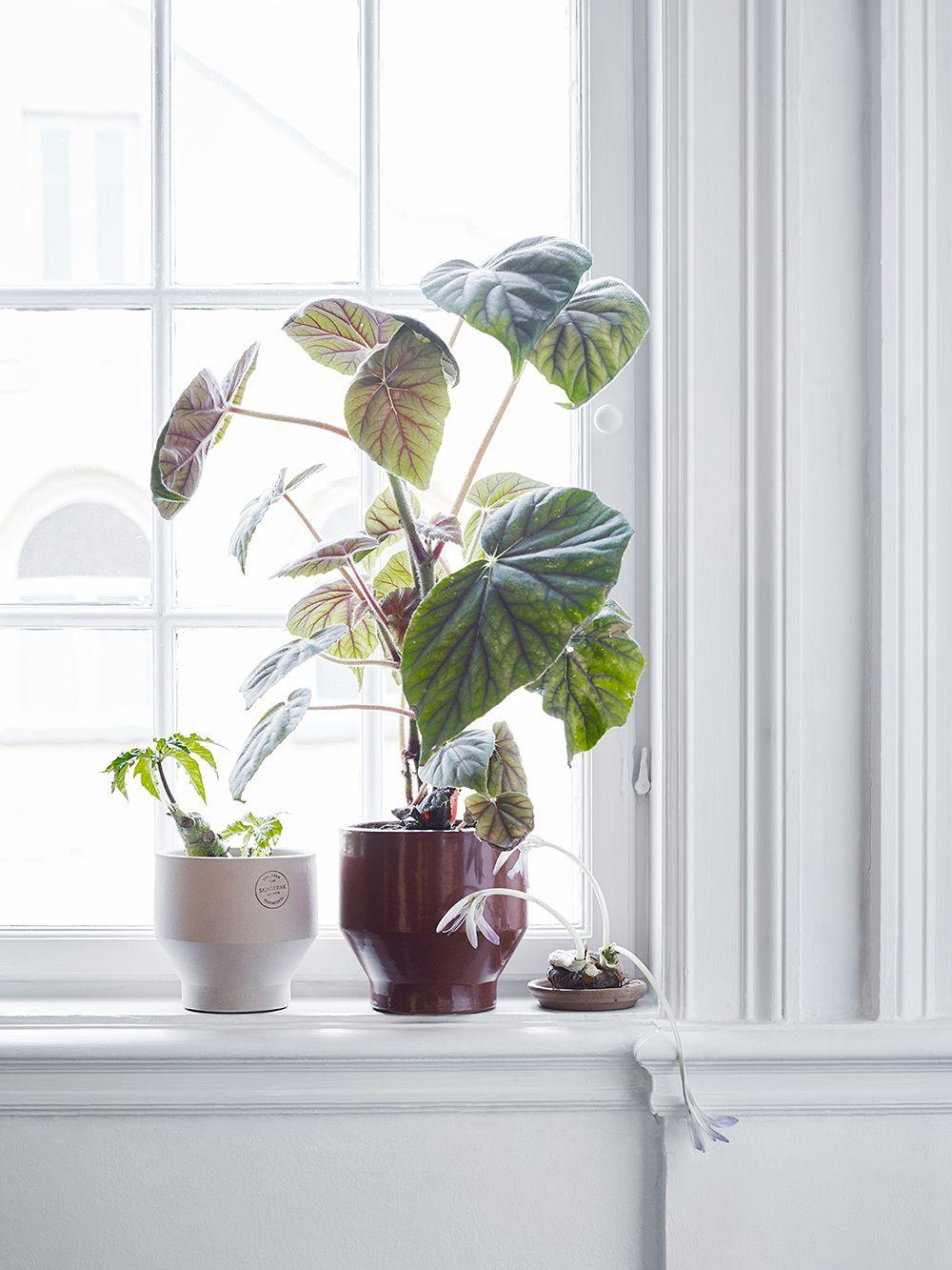 Skagerak Edge planters