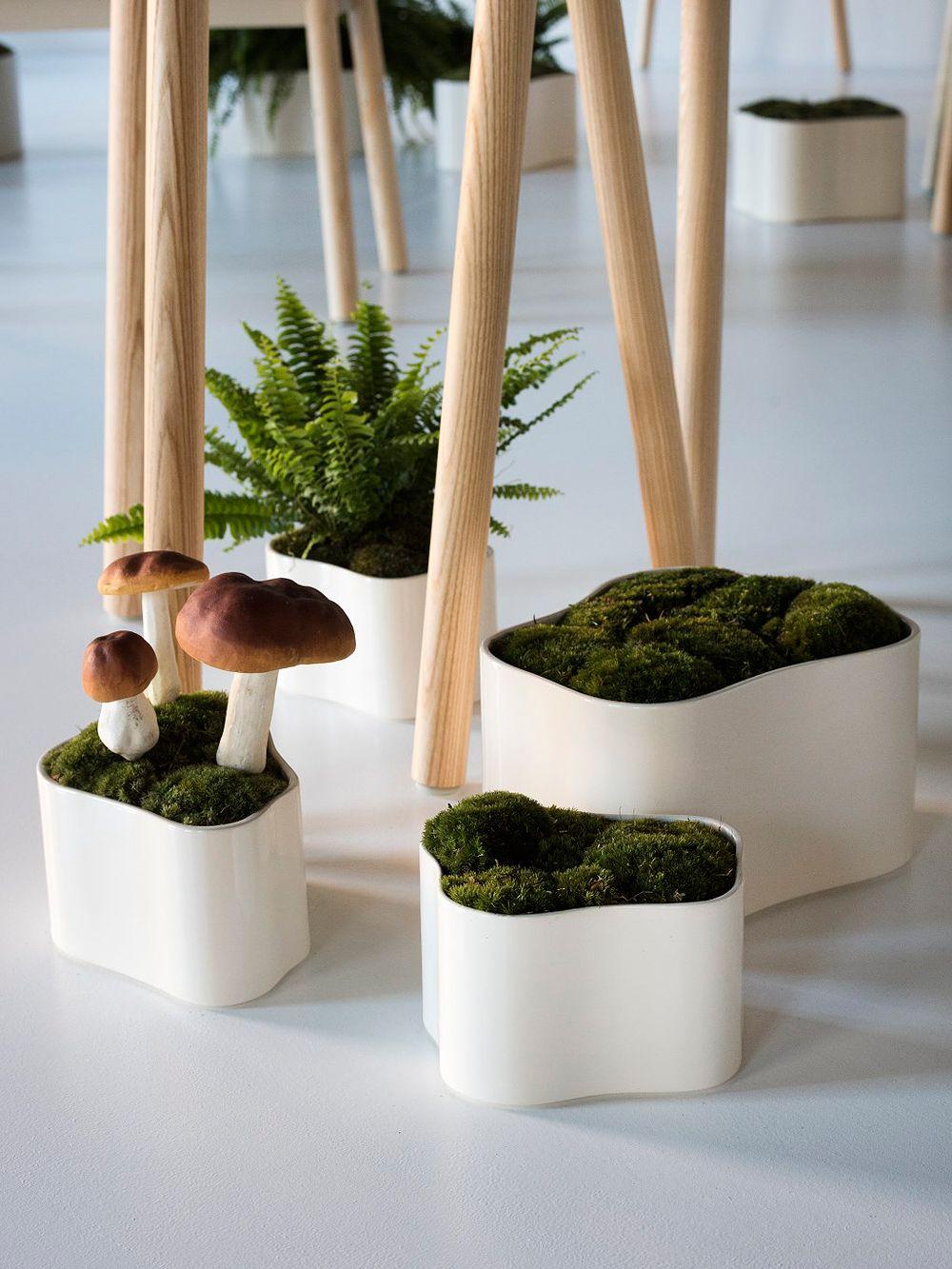 Artek Riihitie plant pots