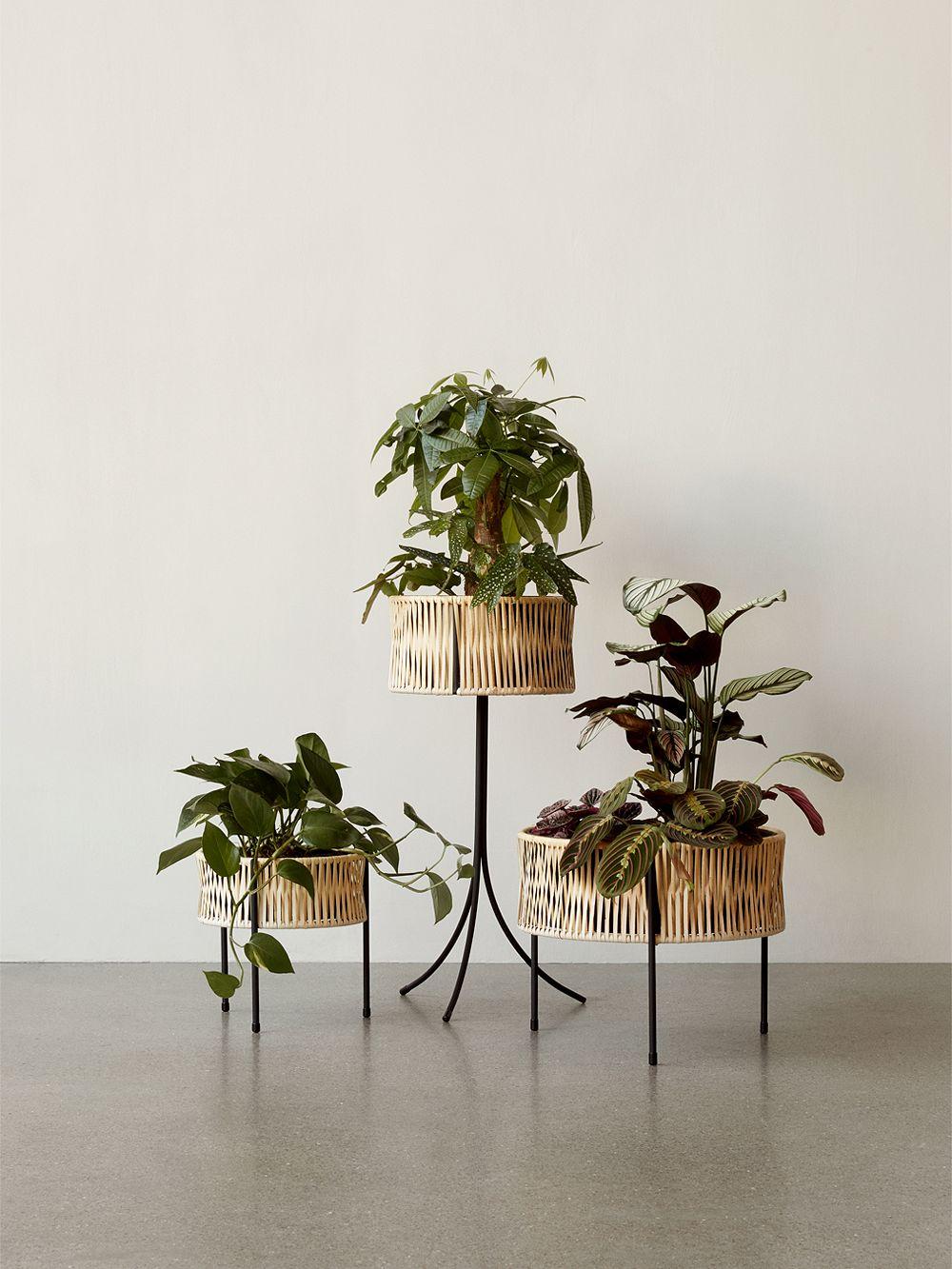 Menu Umanoff planters