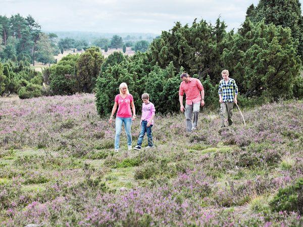 Mechelse Heide wandeling