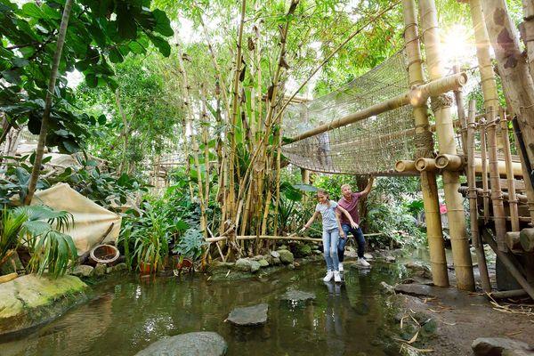 Jungle Dome - Het Heijderbos