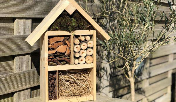 Center Parcs Thuis DIY – een insectenhotel maken