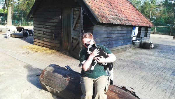 De verzorging en pasgeboren dieren in Center Parcs