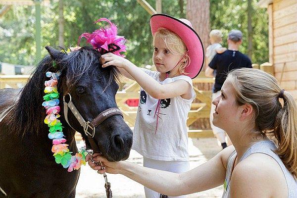 Pony Vakantie Meerdal Center Parcs
