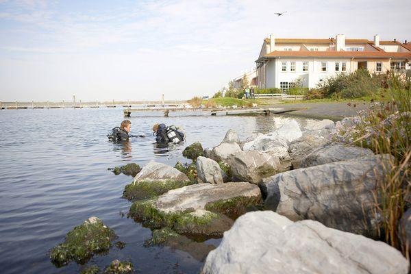 Cursus PADI Open Water