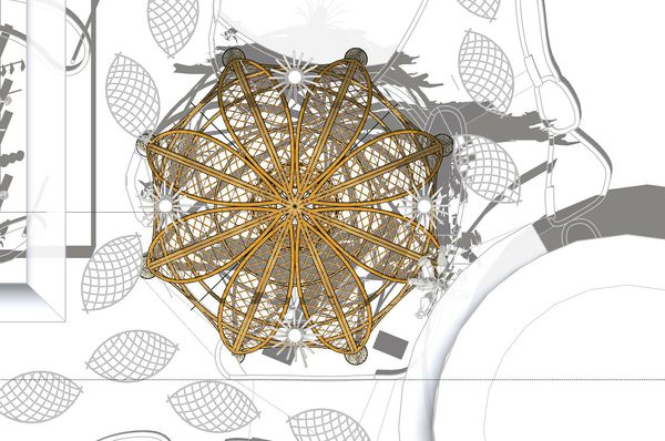 NIEUW: Bamboe Dome in Limburgse Peel