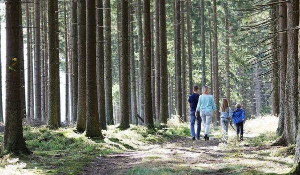 5 familiewandelingen in de buurt van Center Parcs Les Ardennes