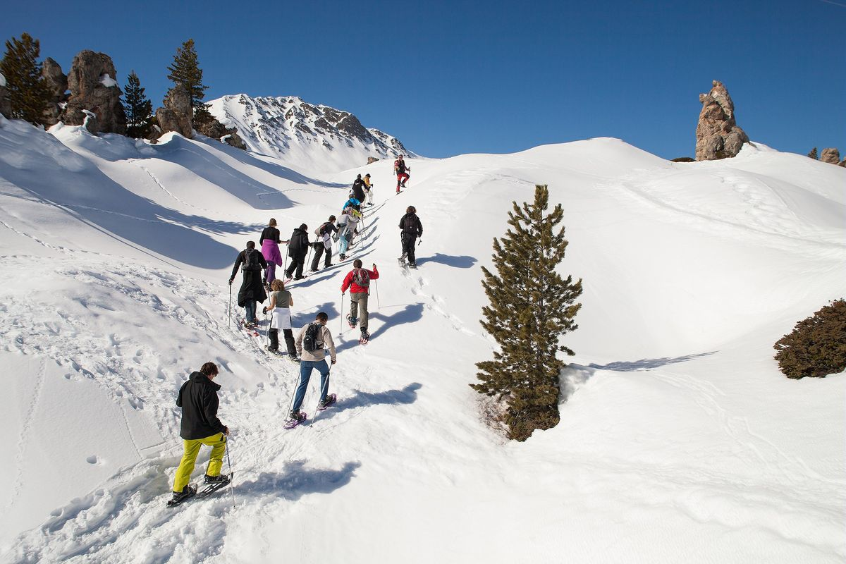 Un groupe de personne en randonnée à la montagne.