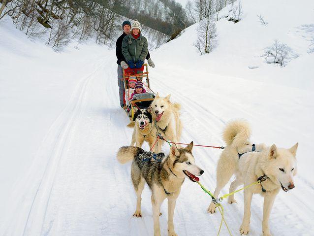 balade-chiens-traineau-andorre
