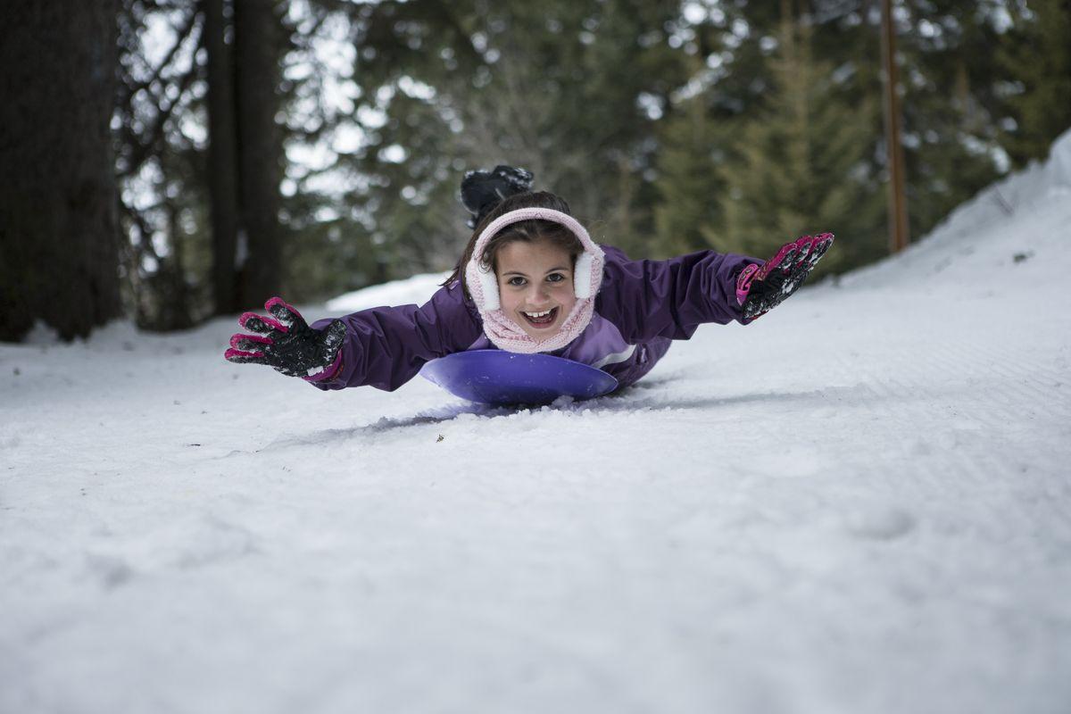 Luge aux sports d'hiver