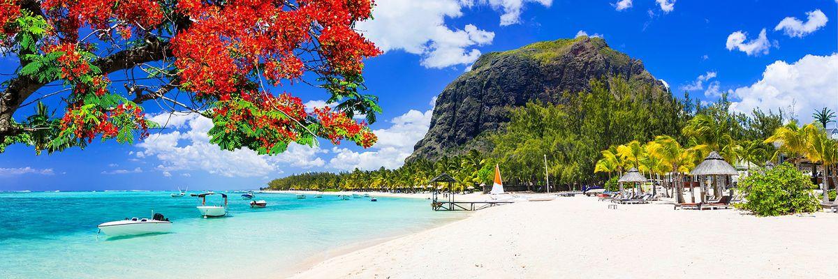île Maurice - Rivière Noire - plage de l'île Maurice