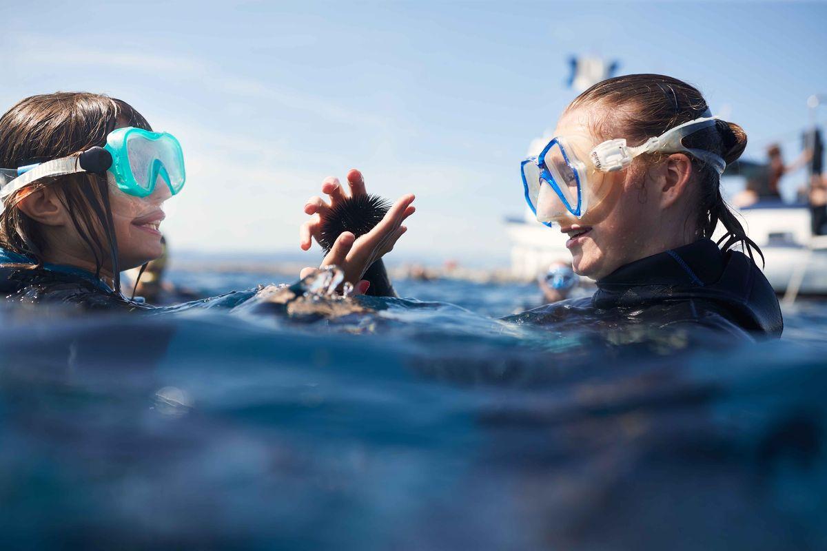 Snorkeling en mer Méditerranée à Fréjus - RendezvousCheznous