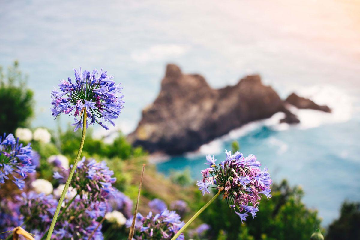 Partir en septembre Madère vacances à la mer Pierre et Vacances