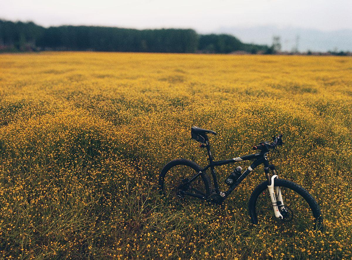 Balade à vélo pendant les vacances
