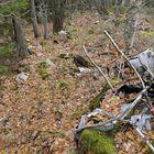 Lehdet peittävät ison kerroksen muovia ja muuta jätettä. Näkyvillä on muun muassa rautaromua.
