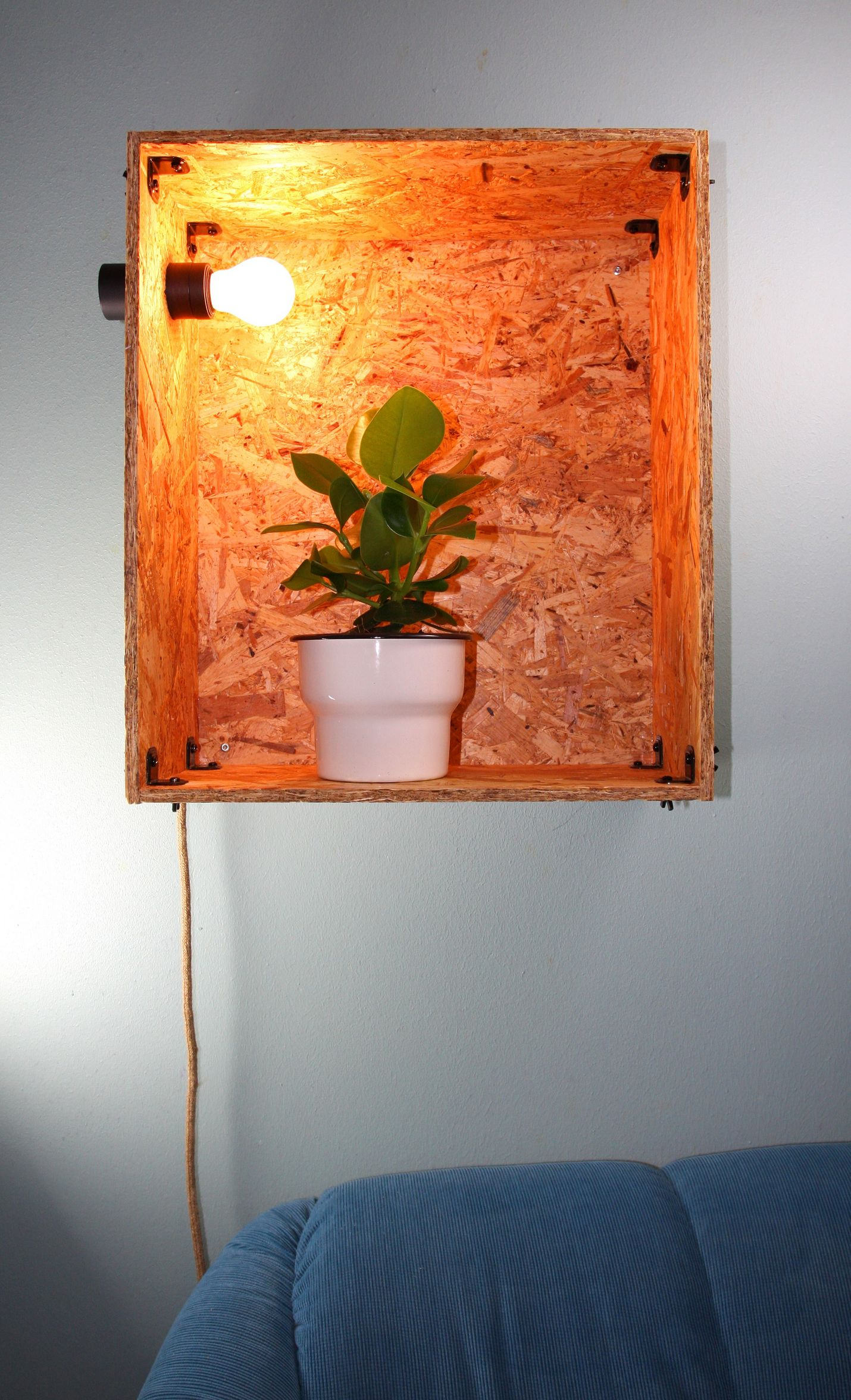Valolaatikko estää huonekasvia vaipumasta kaamokseen.