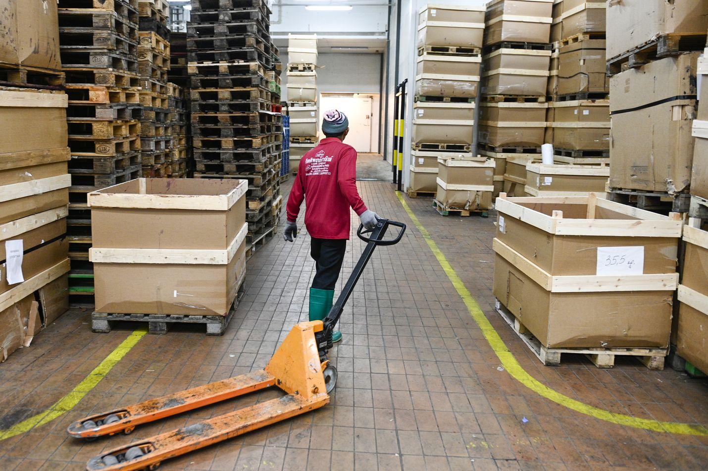 Marjasesonkia vasta käynnistellään Pohjois-Suomessa. Sitten kun sesonki on kuumimmillaan, kainuulaiseen Arctic Internationaliin tuodaan yhden päivän aikana metsästä jopa 10 000 laatikkoa mustikkaa.